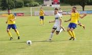 Auch in der dritten Cup-Qualifikationsrunde steht für Uzwil (gelb/blau) kein Heimspiel an. (Bild: Simon Dudle)