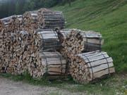 Der Säntis Innovationscluster Holz will mit heimischem Holz punkten. (Bild: Wald Schweiz)