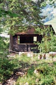 Dank neuen Öffnungen kommt mehr Licht in die Blockhütte auf dem Inseli bei Neu St.Johann hinein. (Bild: Sabine Schmid)