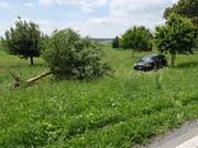 Das Auto kollidierte seitlich mit dem Apfelbaum und brachte diesen zu Fall. (Bild: Luzerner Polizei)