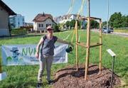 Vereinspräsidentin Regula Ammann tränkt die frisch gepflanzte Linde an der Ecke Mörikonerstrasse/Weinfelderstrasse. (Bild: Christoph Heer)