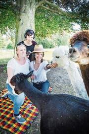 Besitzerin Desirée Müller, Produzentin Rika Brune und Moderatorin Mona Vetsch streicheln die Alpakas. (Bild: Andrea Stalder)