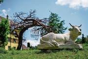 Die zwei Tonnen schwere Kuh von Steinmetz-Weltmeister Tobias Kupferschmidt liegt im Gras des Rotfarbareals, hinter ihr der Baum aus Metall von Thomas Urben. (Bild: Maya Heizmann)