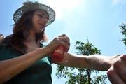 Bei einer Mückenplage wird gerne das Insektenspray hervorgeholt. (Bild: Nana do Carmo)