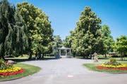 Der Jakob-Züllig-Park in Arbon. (Bild: Reto Martin)