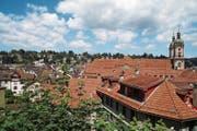 Freie Sicht: Von der Berneggstrasse blickt man auf den Dom mit dem Gallus-Relief zwischen den Dachziegeln (Bildmitte). Wo heute noch Büsche wachsen (Vordergrund), sind 17 Wohnungen geplant. (Bild: Roger Berhalter)