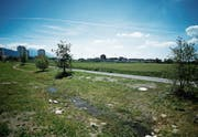 Hier in der Herti Nord könnte dereinst die zentrale Tennisanlage zu stehen kommen. Bild: Stefan Kaiser (Zug, 22. Juni 1018)