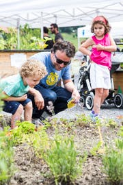 Was wächst denn hier? Gross und Klein konnte am Samstag den neuen Freizeitpark im Friedental entdecken. Bild: Manuela Jans-Koch (Luzern, 24. Juni 2018)