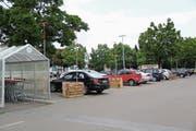 Visiere wie die auf dem Bild sind beinahe auf dem ganzen Migros-Parkplatz in Widnau verteilt. (Bild: Seraina Hess)
