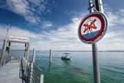 Bei der Schiffsanlegestelle im Hafen Güttingen zeigt die Tafel das Badeverbot an. (Bild: Donato Caspari)