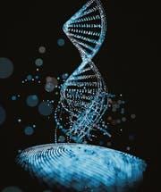 Zur Identifizierung einer Person: So einzigartig wie der Fingerabdruck (unten) ist auch die DNA. (Bild: Getty)