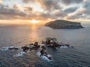 Der Vulkanausbruch auf der Galápagosinsel Isabela hat bislang keine grösseren Schäden für Flora und Fauna angerichtet. (Bild: KEYSTONE/AP simonjpierce.com/SIMON PIERCE)