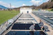 Arbeiter montieren die Panels auf dem Dach des EWO-Unterwerks. (Bild: PD)