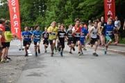 Der Start zum Seelisberger Jugendlauf erfolgte beim Tannwald. (Bild: Christoph Näpflin, Seelisberg, 3. Juni 2018)