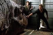 Owen (Chris Pratt) und Claire (Bryce Dallas Howard) müssen die letzten Dinosaurier vor dem Aussterben bewahren. (Bild: Universal)