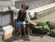 Vorsicht beim Kontakt mit Hunden in fremden Ländern - sie könnten tollwütig sein. (Keystone)