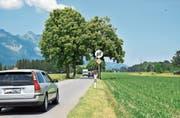 An der Kantonsstrasse Buchs–Grabs-Sennwald, zwischen der Einmündung Werdenstrasse und dem Ochsensand, soll im Rahmen des 17. Strassenbauprogramms ein Rad- und Gehweg gebaut werden. (Bild: Heini Schwendener)