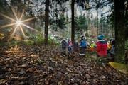 Waldspielgruppen sind schon länger verbreitet - im Bild eine Gruppe im Luzerner Bireggwald. Wald-Kindergärten hingegen sind noch ungewohnt. Archivbild LZ