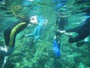 Besonders spannend war es, die fantastische Welt unter Wasser zu entdecken.