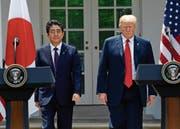 Einen Tag vor dem G7-Gipfel in Québec empfing US-Präsident Donald Trump den japanischen Ministerpräsidenten Shinzo Abe in Washington. (Susan Walsh/AP (7. Juni 2018))