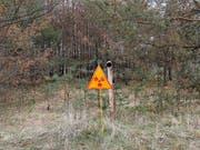Die Sperrzone gilt bis heute: Nach der Explosion im ukrainischen Atomkraftwerk Tschernobyl 1986 wurde ein Gebiet weit rund um die Anlage radioaktiv verseucht. (Bild: KEYSTONE/AP/EFREM LUKATSKY)