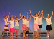 Diverse Tanzgruppen präsentieren am Samstag, 16. Juni, ihre Showeinlagen (Bild: PD)