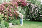Ein besonders schöner Naturgarten. Lilo Müller riecht an den blühenden Wildrosen. (Bild: Nicole D'Orazio)