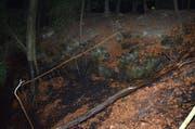 Der brennende Stamm rollte das Waldbord hinunter. (Bild: Kapo AR)