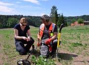 Auch auf dem Acker im Ägelsee-Gebiet werden Daniela Wiesli und Stefan Di Staso fündig. (Bild: Christoph Heer)
