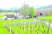 Das Altersheim Forst wird mehr als ein halbes Jahr früher geschlossen als geplant. (Bild: Max Tinner)