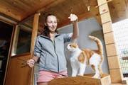 Tierpflegerin Angela Roth spielt mit Katze Ultimo. (Bild: Werner Schelbert (Allenwinden, 5. Juli 2018))