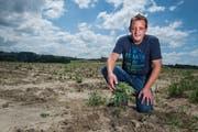 Der Luzerner Hinterländer Daniel Koller ist der wohl erste Landwirt im Kanton, der auf offenem Feld legalen Hanf anbaut. (Bild: Boris Bürgisser, 18. Juni 2018)