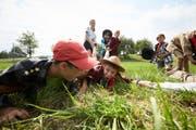 Die Kinder der Pfadi Winkelried Stans-Ennetmoos bei einem Lagerspiel. (Bild: Jakob Ineichen, Merlischachen 10. Juli 2018).