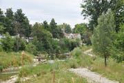 Der Murg-Auen-Park ist ein beliebtes Naherholungsgebiet in der Stadt Frauenfeld.