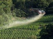 Pestizide in der Landwirtschaft - wie hier ein Mittel gegen Pilzbefall der Reben - stossen in Teilen der Bevölkerung auf Kritik. Der Schweizer Bauernverband hat daher eine Broschüre herausgegeben, um das Vertrauen der Konsumentinnen und Konsumenten zu gewinnen. (Bild: KEYSTONE/ALESSANDRO DELLA VALLE)