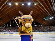 Auch am 92. Spengler Cup ist hochklassiges Eishockey zu sehen (Bild: KEYSTONE/SPENGLER CUP/GIAN EHRENZELLER)