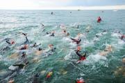 Der Triathlon findet am Sonntag zum zweiten Mal in Rorschach statt und lockt mehrere hundert Sportler an. (Bild: PD)