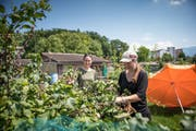 Rahel Eisenhut (links) und Fabienne Tobler in ihrem gemeinsamen Schrebergarten auf der Allmend. (Bild: Roger Grütter (Luzern, 9.Juli 2018))