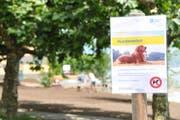 Das Hundeverbot beim Gemeindehausplatz in Hergiswil wird schon bald wieder aufgehoben. (Bild: Matthias Piazza, 7. Juni 2018)