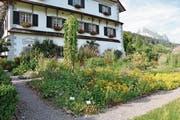 Der Klostergarten ist öffentlich zugänglich, es können auch Führungen gebucht werden. (Bild: Sabine Schmid)