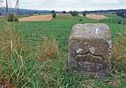 Auf der Kantonsgrenze über dem Hatwilerfeld bei Maschwanden steht einer der historischen Grenzsteine von 1537. (Bild: Andreas Fässler (11. Juli 2018))