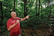 «Die Waldluft ist schon etwas Besonderes.» Walter Büchel geniesst seine Spaziergänge im Rüthner Wald. (Bild: Bilder: Max Tinner)