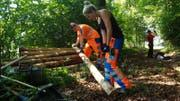 Mit Baumstämmen wird der Wanderweg seitlich befestigt. (Bild: PD)
