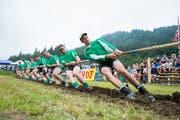 Ein Bild aus dem Vorjahr: Die Engelberger versuchen dem Gegner entscheidende Meter abzuknöpfen. (Bild: Roger Grütter)