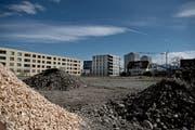 Das Baufeld C1 in der Feldbreite soll bald überbaut werden. (Bild: Corinne Glanzmann (Emmen, 23. März 2017))