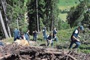 Die Pilatus-Lehrlinge räumen den Wald bei Sedrun auf. (Bild: Susi Rothmund)