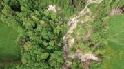 Die geplante Hängebrücke über den Mattenbach soll eine Alternative zu dem Wanderweg Heiden-Fünfländerblick bieten, dessen Begehbarkeit oft unter Überschwemmungen leidet. (Bild: Michel Canonica)
