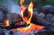 Bei Grillpartys im Freien ist in diesen Tagen wegen der hohen Brandgefahr besondere Vorsicht geboten. (Bild: Nana do Carmo)