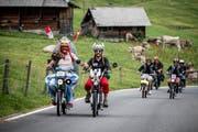 Teilnehmer des Alpenbrevets tuckern durch den Kanton Obwalden. Nicht alle sahen das Ziel. Sie wurden von der Polizei vorher aus dem Verkehr gezogen. (Bild: PD)