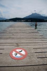 Sprünge ins Wasser bergen Risiken. Darum rät die SPS Warnsignale zu befolgen. (Bild Corinne Glanzmann; Lido, 17. Juli 2017).